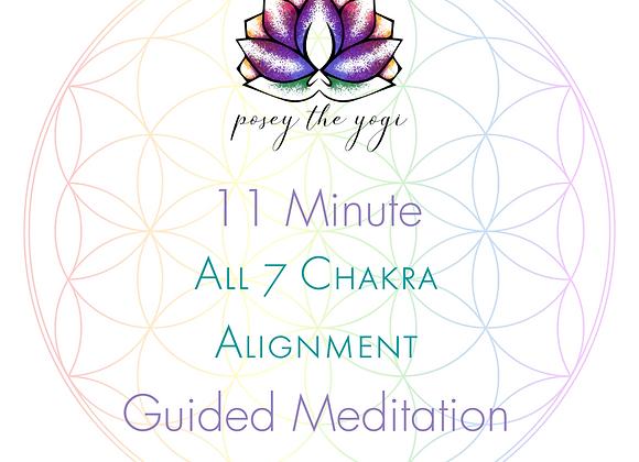 11 Minute Meditation - All 7 Chakras