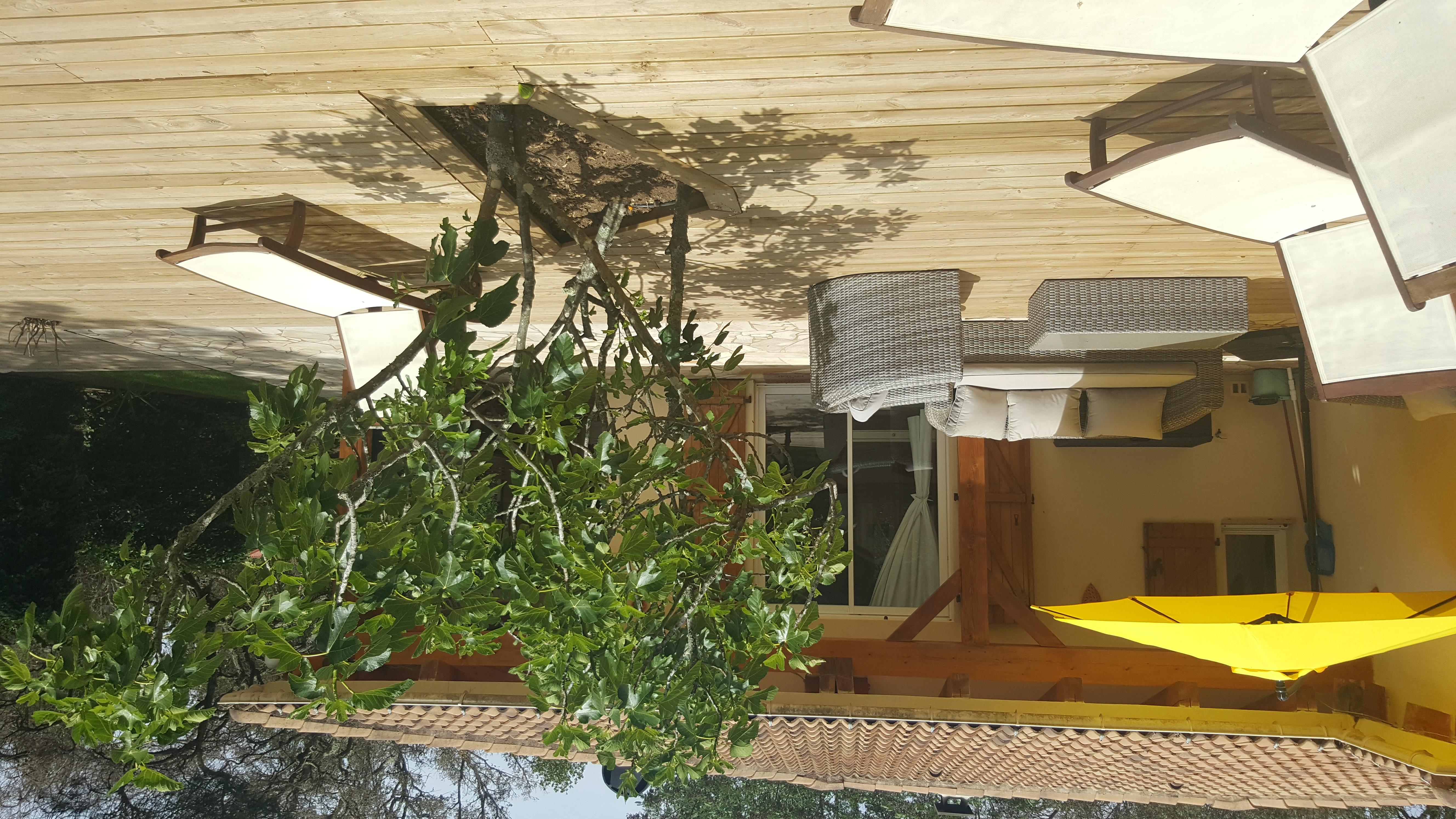 Ferienhaus korsika, beheizter Pool