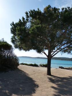 Korsika, Ferienhaus mit priv beheizt. Pool , Garten, Strand in