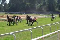 Pferderennen Süd Korsika