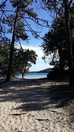 Locations Corse vacances