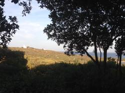 Korsika Fewo