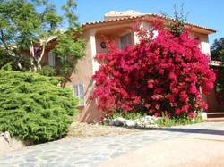 Location Corse de particuliers