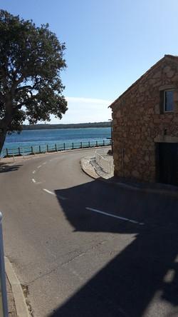 Ferienhaus Korsika mit Hund