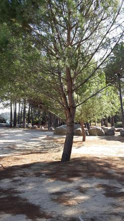 Korsika Ferienhaus mieten Sandstrand