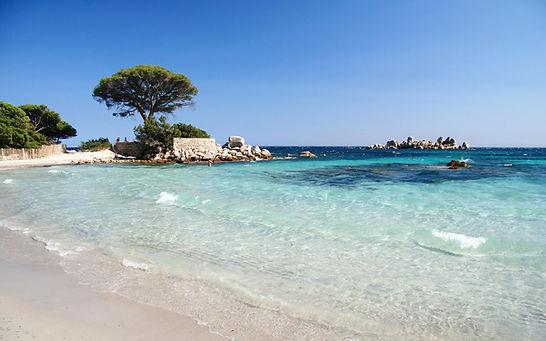 Corse Locations de vacances Corse : Pointe de la plage d'acciajiu face à la folaca.