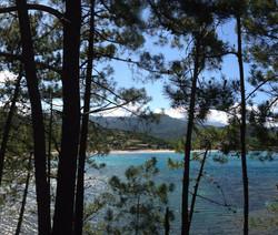 Ferien mit Hund, Korsika