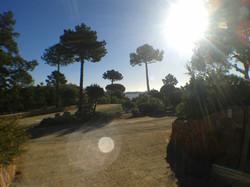 Ferienwohnung Korsika mieten
