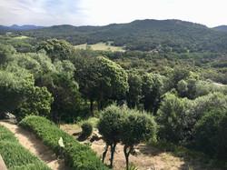 Corse du sud, location Villa vue mer