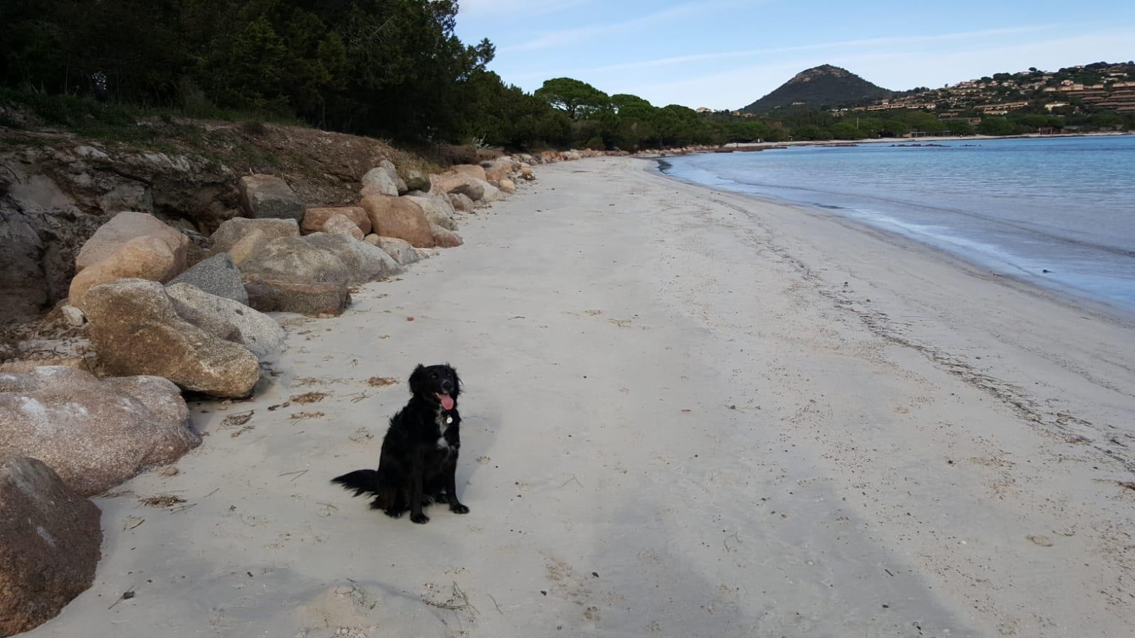 Korsika Ferienhaus, strandnah