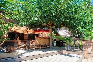Fewo Süd Korsika, 3 Schlafzimmer, Terrasse , Pool