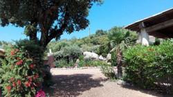 Fewo Süd Korsika mit Pool