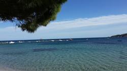 Ferienhaus Korsika mieten