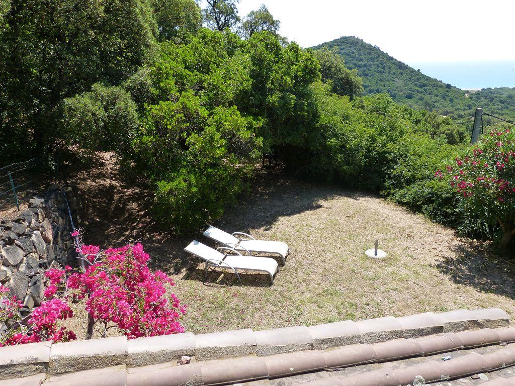 Ferienhaus Korsika, Hund