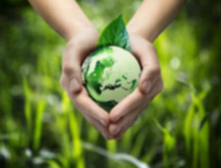 eco-friendly-1024x779.jpg