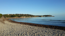 Ferienhaus auf Korsika mieten