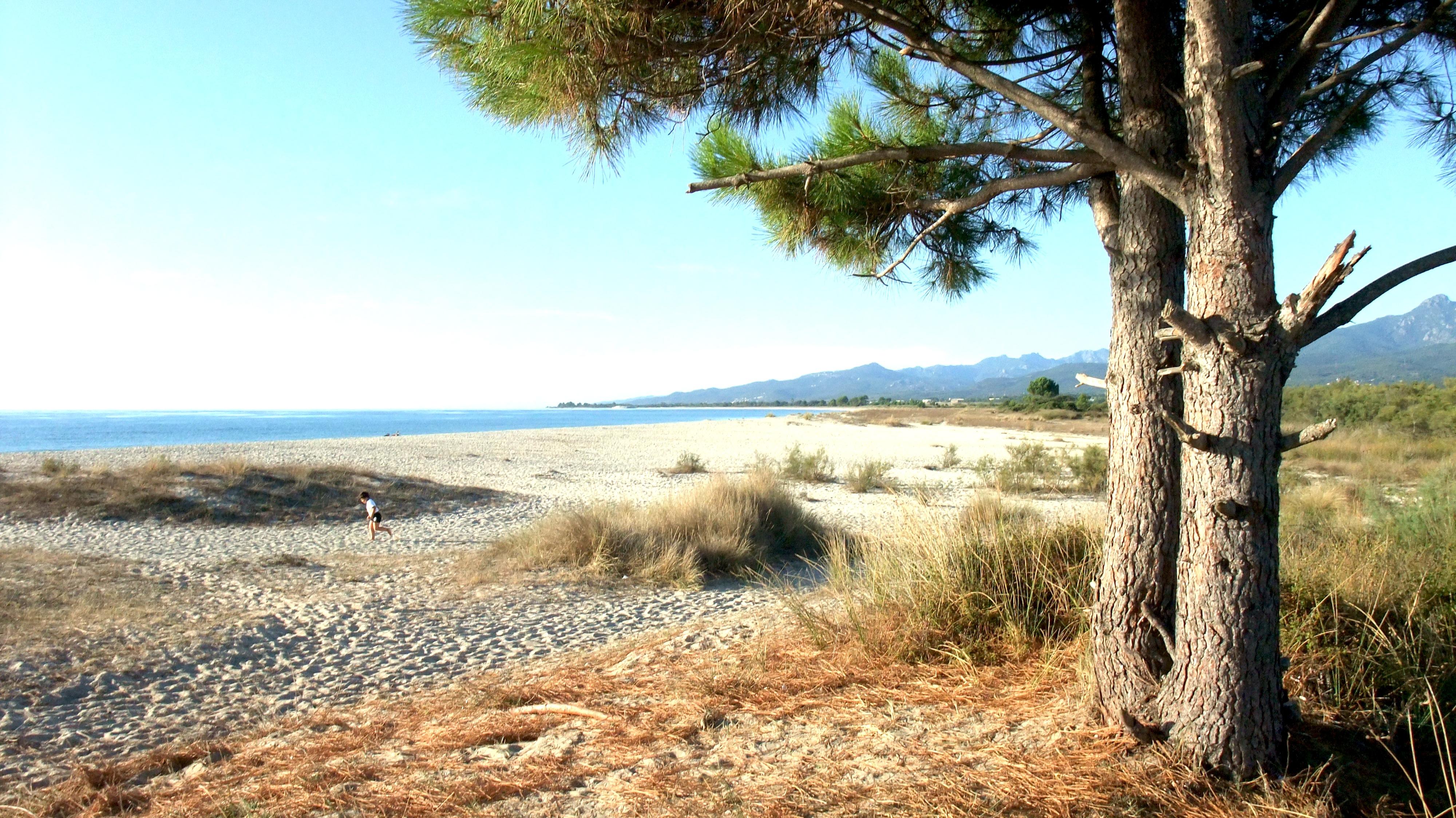 Korsika Ferienhaus mit Hund