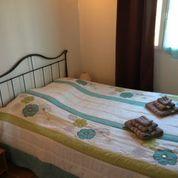 Ferienhaus Korsika, Hunde erlaubt