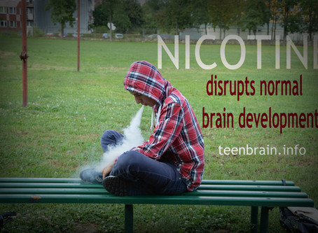 Your brain on drugs...nicotine and its impact