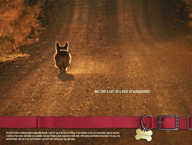 Dog lost on dirt road poster for Vetsribe. Steve Swartz, Art Director, Copywirter. Tim Halpin, Creative Director