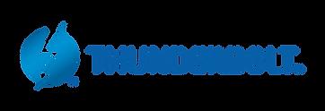 TB3 Logo.png