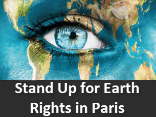 GMOs & The Agro-food Industry (Rights of Nature Tribunal 2015 in Paris, Part 2)