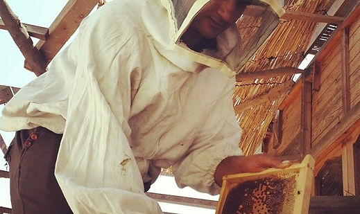 Mahmoud is Nawaya's #bee keeper. We harv