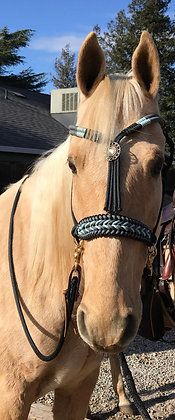 Rope Reins and Braided Side Pull Rope Halter