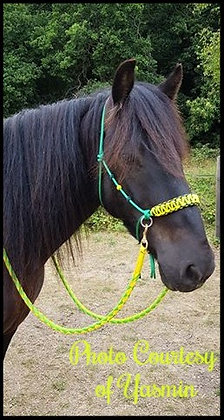 Braided Side Pull Rope Halter Designs