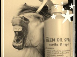 Wonders of Neem Oil Spray and Bad News for Flies