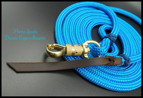 12ft Training Line with Blue accents and Safety Swivel Brass
