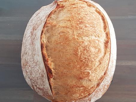 Beginner's Sourdough Loaf