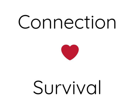 Connection & Survival