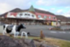 大笹牧場.jpg