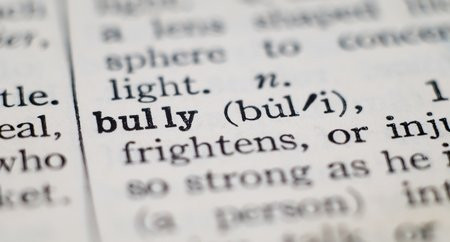 Dealing with workplace bullies