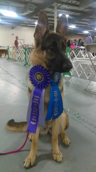 Star 1st Place New Title