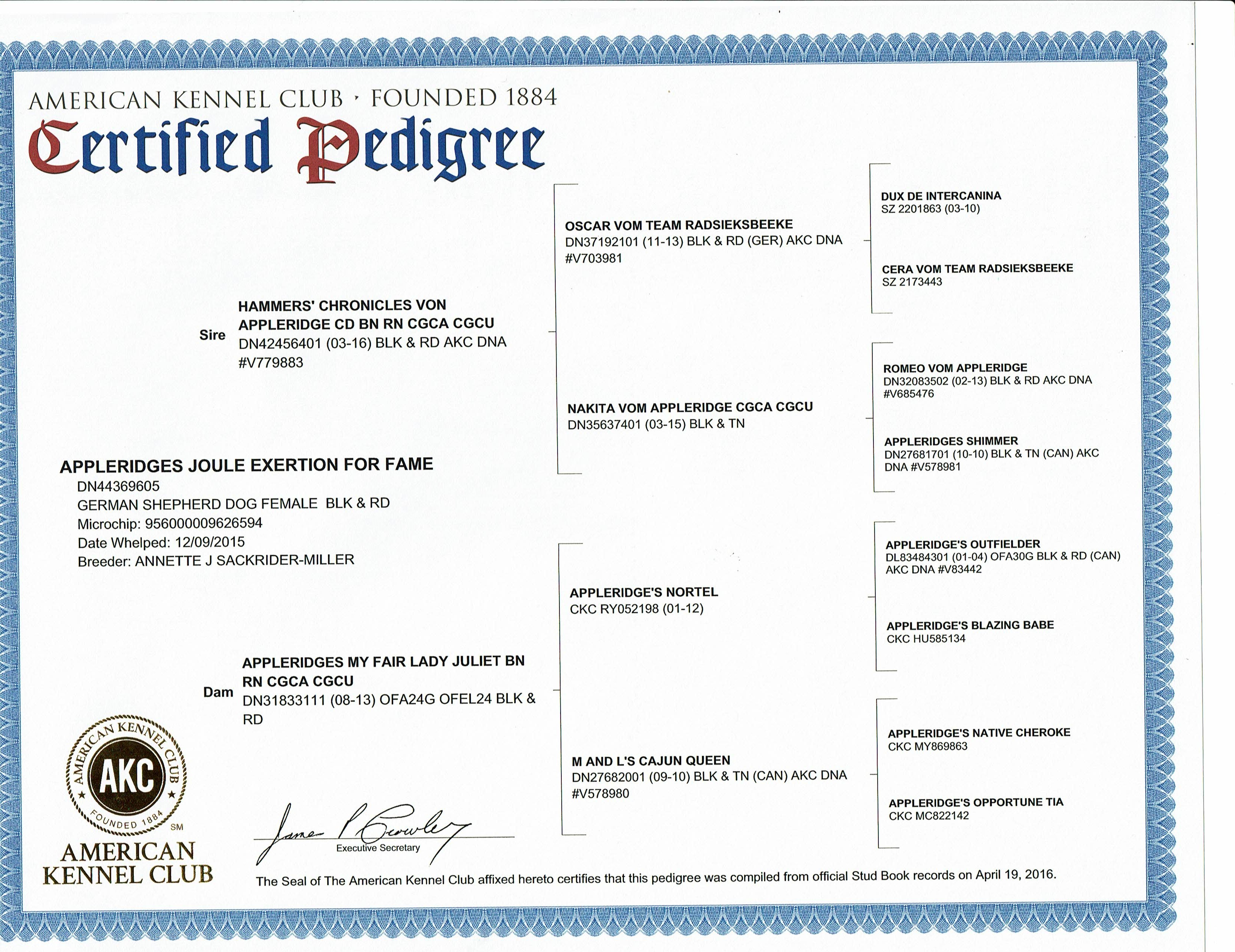 Jules Certified Pedigree