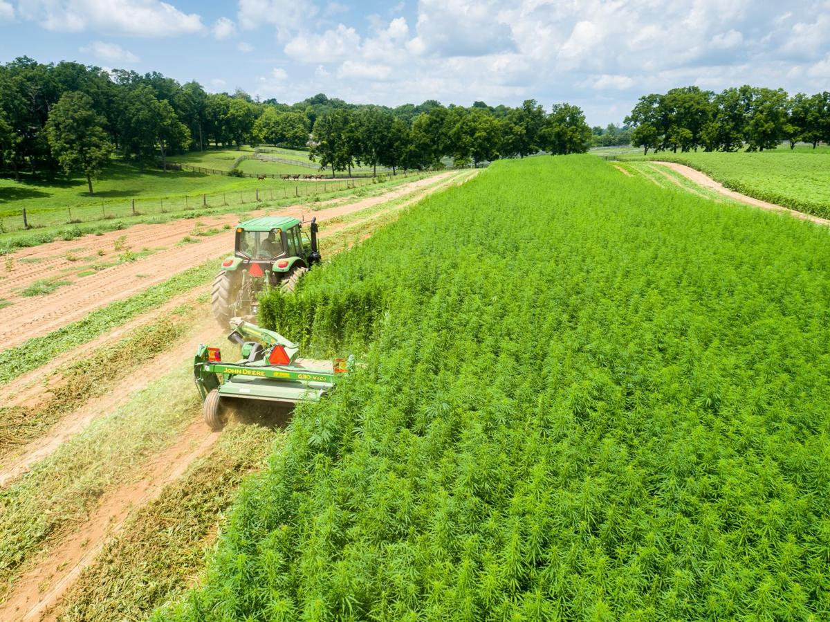 Agricultural Hemp and Materials