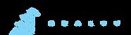 Logo Company BLR.png