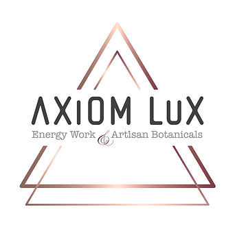 axiom_logo_final_full%252520logo_edited_