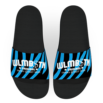 Blue Zebra Slides