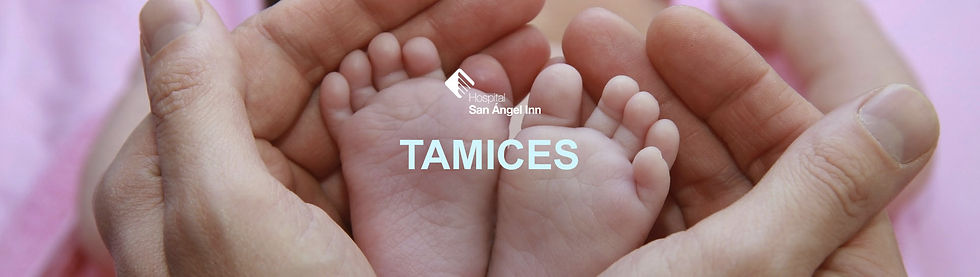 Gral_TamIces.jpg