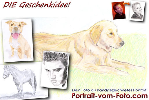 www.Portrait-vom-Foto.com