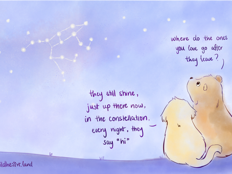 """every night, they say """"hi"""" 🌟 - a piece about loss"""