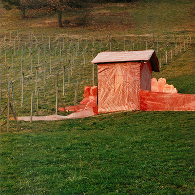 Small House in a Vineyard