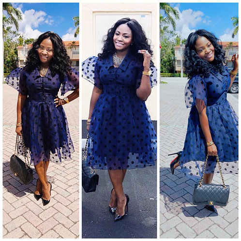 Blue Sheer Polka Dot Dress