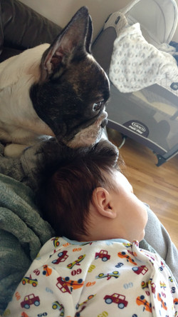 Baby Joaquin and Olive watching cartoons on a lazy Saturday.