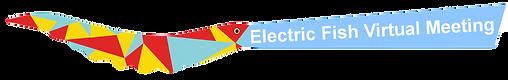 logo_efishvirtualmtg_edited.png