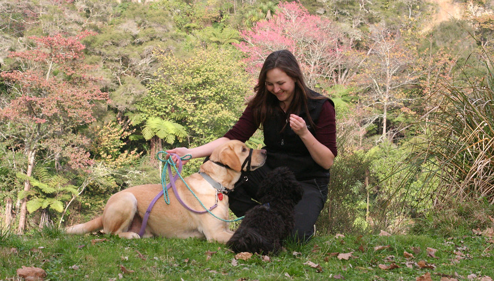 Dog training_edited.jpg