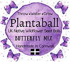 Butterfly 72x64mm Small Soap Boxes (1) PNG.png